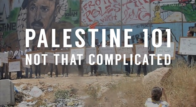 Palestine 101 video